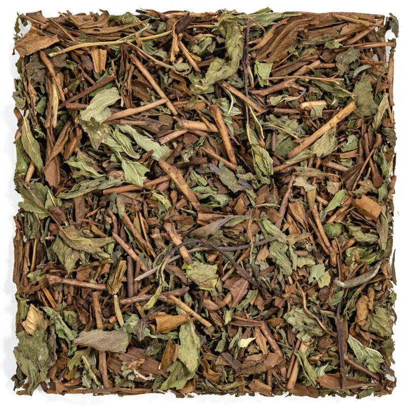 image-canadian-green-tea