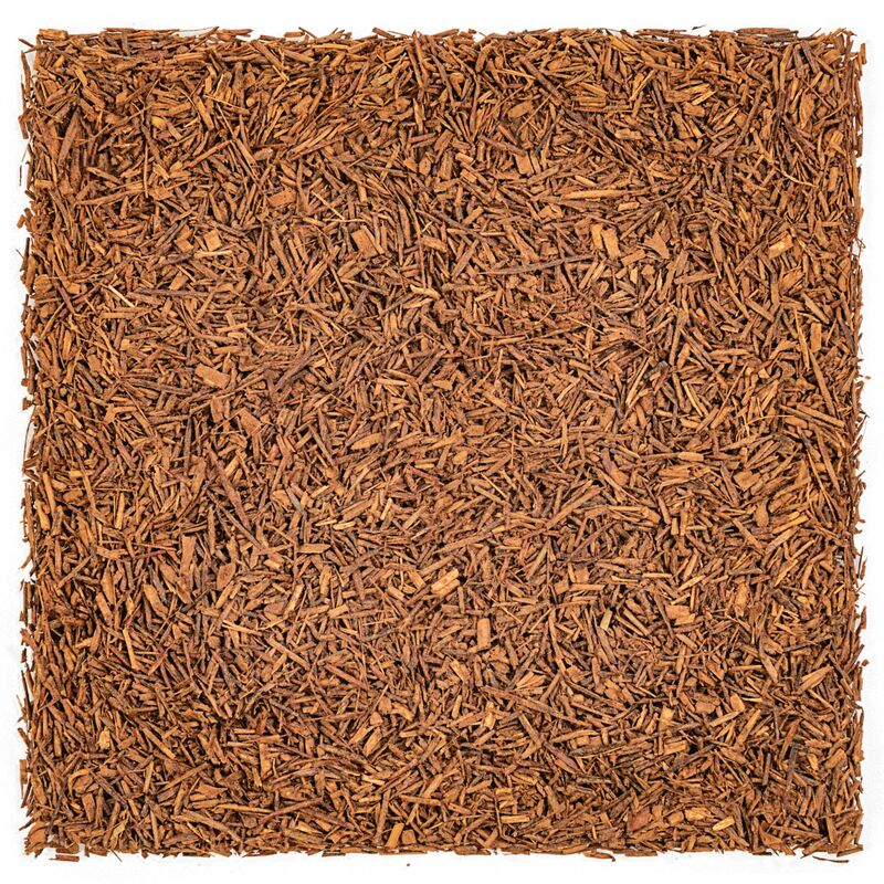 Rooibos Pur Cacao